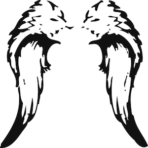Angel Wings Wall Decal TrendyWallDesignscom