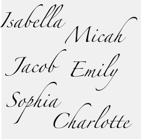 Customizable zapfino font wall letterings from trendywalldesigns customizable zapfino font wall letterings zoom altavistaventures Choice Image